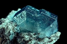 El meu bloc de fotografia: Minerals (177)  Fluorapatita. Ca5(PO4)3F. Parelhas, Rio Grande do Norte (Brasil). 11x17 mm.