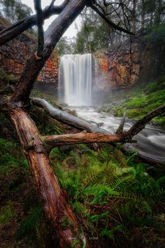 Trentham Falls - Probably the closest thing to Svartifoss that Victoria has.
