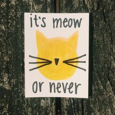 It's meow or never cat pun