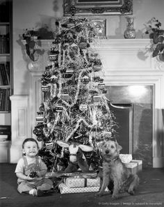 1950s: Christmas tree with boy and dog.( This looks our livingroom when I was little )