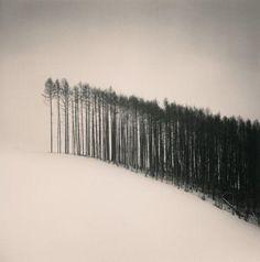 Michael Kenna – Forest Edge, Hokuto, Hokkaido, Japan, 2004