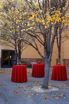 Theater courtyard  Reception style set up. Maximum occupancy 50 guests
