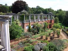 The Hampstead Heath Pergola!