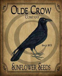 Primitive Vintage Olde Crow Co. Sunflower Seeds by Starrmtnprims