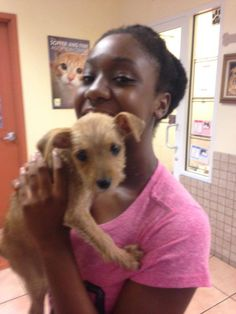 """During Clear The Shelters, a national movement to get animals adopted, more than 17,000 of them found homes. People were lined up at shelters all over the country including in front of Miami-Dade Animal Services, where 13-year-old Zipporah Currie adopted Dolly. """"She smells like cookies,"""" said Zipporah. We wonder, what would happen to the euthanasia numbers across the country, if Clear The Shelters was a weekly or even monthly occurrence? #miami #cleartheshelters #humanesociety"""