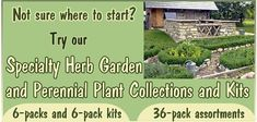 Specialty Herb Garden Six Packs and 36 Pack Herb Garden and Perennial Assortments make it easier to plant the garden of your dreams.