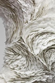 As explained in the link the artist Mindy Shapero creates different shapes and texture using different materials feather -like for me but interesting piece of art. Textiles, Foto Art, Paperclay, Shades Of White, Fabric Manipulation, Photo Manipulation, Textures Patterns, Fabric Patterns, Paper Art