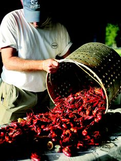 Crawfish boil + bonus Cajun Spice recipe from Donald Link