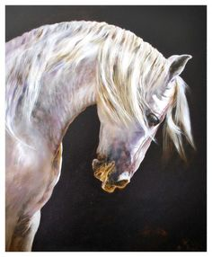 White Horse by Manuel Garcia - White Horse Painting - White Horse Fine Art Prints and Posters for Sale