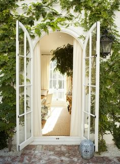 Vines and an arched French door