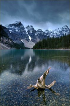 Moraine Lake by Ingrid Lamour on 500px