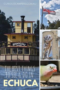 If you are exploring the Murray River, Echuca is the perfect place to start. Whether you're interested in the Murray's history or you want to explore the river's natural beauty, here are a few things to get you started. Victoria Australia, South Australia, Stuff To Do, Things To Do, Murray River, Water Activities, Plan Your Trip, Amazing Destinations, Australia Travel