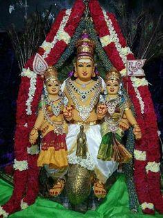 Muruga with his Consorts Valli n Deivayani Lord Shiva Painting, Krishna Painting, Peacock Flying, Devon Ke Dev Mahadev, Lord Murugan, Goddess Lakshmi, God Pictures, Beautiful Fish, Indian Gods