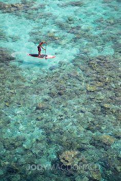 Stand up paddle. Maldives