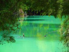 """""""Dominio verde"""". Lago Frías, Bariloche, Argentina. Foto tomada por mí :)"""