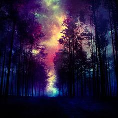 #magic #forest #galaxy