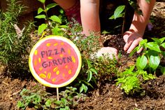 """Grow Your Pizza: 10 Tips For A Family-Friendly Garden 