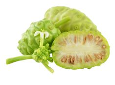 Online hálózatépítésem naplója (blog) - Nagy Julianna oldala First Site, First World, Sprouts, Marketing, Vegetables, Blog, Vegetable Recipes, Cabbage, Veggies