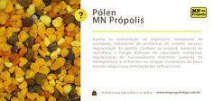 Hoje é dia de saber a importância do Pólen para o nosso organismo. Ele auxilia em diversos fatores e é sem dúvida, um ótimo amigo para a sua saúde!