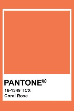 Paleta Pantone, Pantone Orange, Pantone Tcx, Pantone Swatches, Color Swatches, Pantone Colour Palettes, Pantone Color, Pantone Number, Colour Pallete