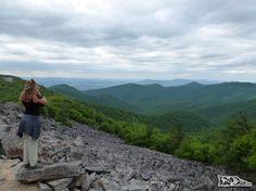 DIcas Shennandoah National Park, na Virginia, nos Estados Unidos