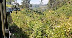 Sri Lanka - junareitti Kandysta Ellaan on ihastuttavan kaunis - Appa matkustaa