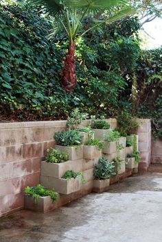 cement block starting point for an herb garden....decorate or paint the blocks? I love this & yes I would stain the blocks to go with my patio/porch stains