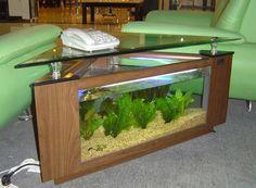 Aqauriums Fish Aquarium Gallery Of Aquatic Designs
