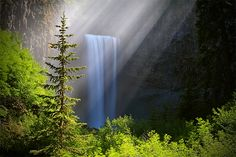 "Tamanawas Falls – ""Guardian Spirit"" – Mt. Hood National Forest, Parkdale, OR - Tula Top"