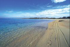 Torre Guaceto - Quelle: ostunirosamarinaresort.com Strand, Italy, Beach, Water, Outdoor, Pictures, Rook, Thailand Travel, Maldives