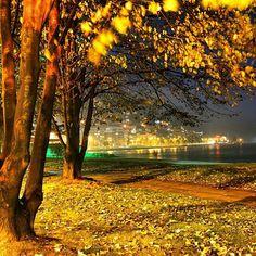 """""""▶ ÖZLEM Bir gece, Gecede bir uyku. Uykunun içinde bene. Uyuyorum, Uykudayım, Yanımda sen.  Uykunun içinde bir rüya, Rüyamda bir gece, Gecede ben. Bir yere…"""" Hello September, Travel City, Beautiful Places, Landscape, History, World, Amazing, Garden, Nature"""