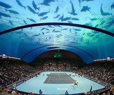 Architect serves up plans for an underwater tennis court off the coast of Dubai |  engineers warn that such a design may be prohibitively expensive and incredibly difficult to execute. New technology would have to be invented to manufacturer a large span of curved glass, and the quality of light may not eve be good enough for a game of tennis. [http://futuristicnews.com/category/future-architecture/]