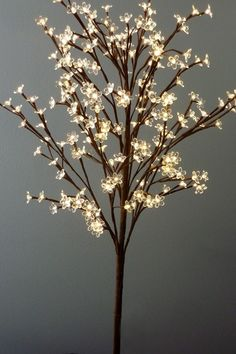 Tree Lamp on Pinterest Lamps, Owl Bedrooms and Floor Lamps