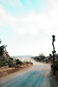 Photo Diary: Palm Springs, CA