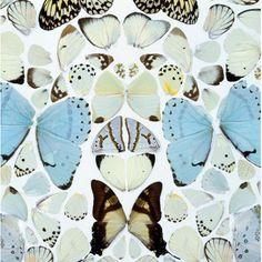 'It's about a civilization, the collapse of a civilization' – Damien Hirst. Opened yesterday at London's Tate Modern, the new Damien Hirst exhibition is the … Tate Modern London, London Art, Tate London, Jeff Koons, Damien Hirst Butterfly, Damien Hirst Art, Art Papillon, Modern Art, Contemporary Art