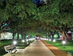 Discovery Green is a 12-acre park in downtown Houston located across from the George R. Brown Convention Center and Hilton Americas Hotel and just blocks away from Minute Maid Park, Toyota Center. Visit their website for information on free yoga classes, festivals, movies, farmer's markets, and many more great family activities!