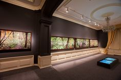 Promoción del Arte: Montaje exposición Tiergarten. Un jardín romántico alemán, en el Museo Nacional del Romanticismo © Ministerio de Educación, Cultura y Deporte / David Serrano