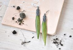 Willow earrings - Dangle hook earrings with real leaves - green resin jewelry with pressed flowers - real plant earrings- spring verdure by OneFlowerStory on Etsy