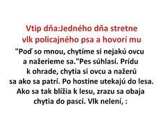 Vtip dňa:Jedného dňa stretne vlk policajného psa a hovorí mu - Spišiakoviny.eu