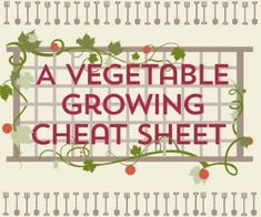 A Vegetable Growing Guide [infographic cheat sheet] with Free Printable Guide