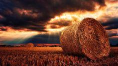Zachód słońca, Ciemne, Chmury, Pola, Rżysko, Bele, Siano