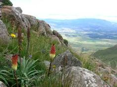 Mount Currie Nature Reserve - Kokstad, East Griqualand.  View from a fair way up!