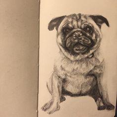 Callie -72  #100days #100portraits #100jiribillas #100daysproject #pug #pugs #pugslife #pugsofinstagram #pugstagram #ilovemydog #ilovemypet #ilovemypug #ishouldbesleeping #instaart #graphite #pencil #puppy #petsofinstagram #pencildrawing #petportrait #draw #derwent #drawing #portrait #portraitdrawing #artfido #art_spotlight #artoftheday #artistsoninstagram #arts_help