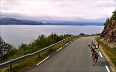 BEST OF 2013: WHAT ONE FINDS ON GOOGLE STREET VIEW