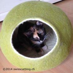 That's the most comfy cat house I know ! C'est la maison de chat la plus confortable que je connaisse ! Colorful Bedding, Cat Cave, House Beds, Catio, Wool Felt, Cow, Nature, Animaux, Haus