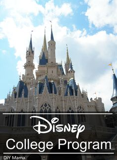 what to expect with the Disney College Program