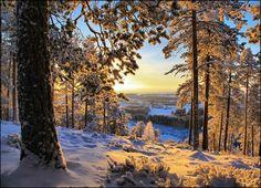 Today's amazing photography 10 of the most beautiful winter scenes! Winter Szenen, I Love Winter, Winter Magic, Winter Time, Winter Photography, Amazing Photography, Landscape Photography, Beautiful Winter Scenes, Winter Beauty