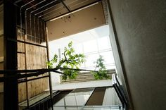 Image result for small atrium stair