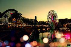California Adventure :)