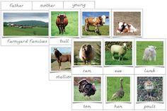 The Helpful Garden: Farmyard Families and Farm Animal Matching Cards